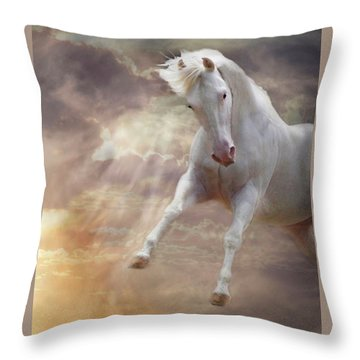 Stormy Throw Pillow