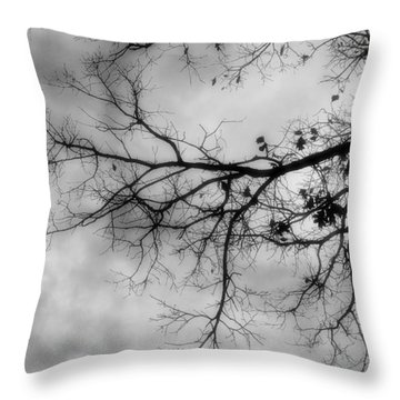 Stormy Morning In Black And White Throw Pillow