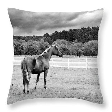 Stormy Pasture Throw Pillow