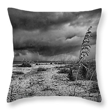 Stormy Seas Throw Pillow by Anne Rodkin