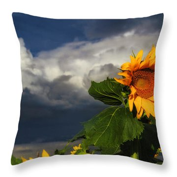 Stormy Sunflower Throw Pillow