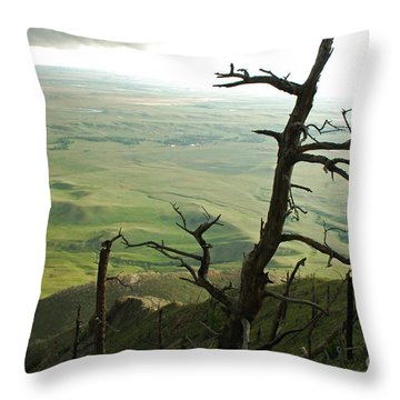 Stormy Tree Throw Pillow by Mary Carol Story