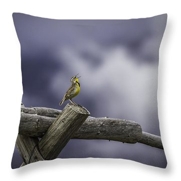 Stormy Weather And A Sweet Song Throw Pillow by Thomas Young
