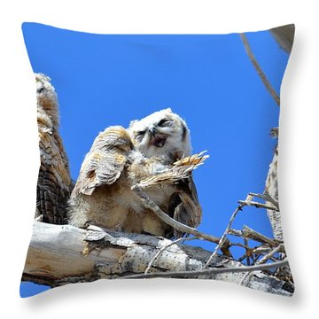 Story Time For The Owlets Part 5 Throw Pillow