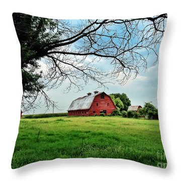 Stovall Farms In The Mississippi Delta Throw Pillow