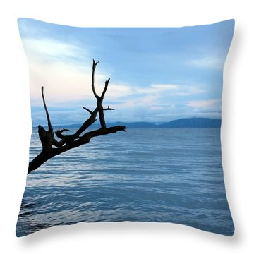 Strait Of Georgia Throw Pillow by Gerry Bates