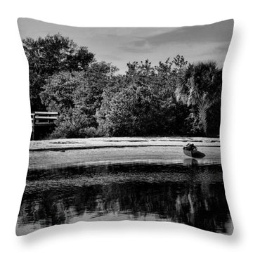 Stranded Throw Pillow by Pamela Blizzard