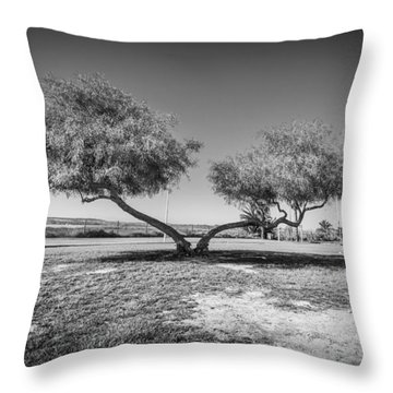 Throw Pillow featuring the photograph Strange Trees by Gary Gillette