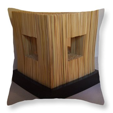Straw Cube Throw Pillow by Daniel P Cronin