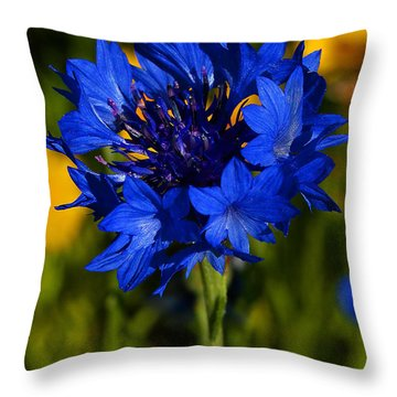 Straw Flower Throw Pillow