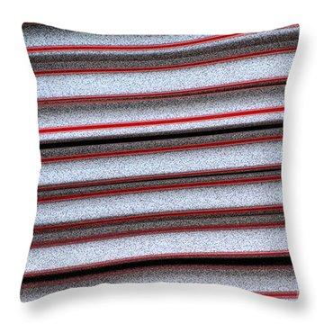Straw Red Throw Pillow by Carol Lynch