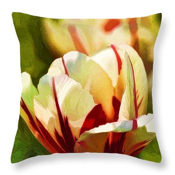 Throw Pillow featuring the photograph Strawberries And Cream by Linda Blair