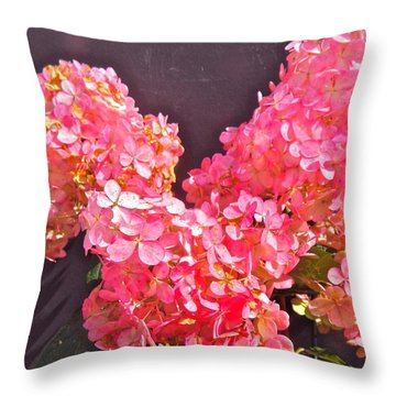 Strawberry Cream Throw Pillow