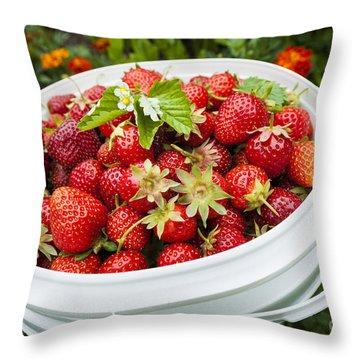 Strawberry Harvest Throw Pillow by Elena Elisseeva