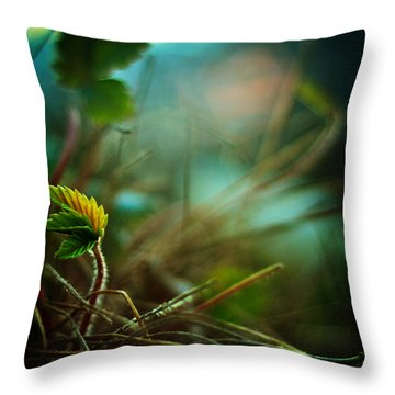 Strawberry Sunrise Throw Pillow by Rebecca Sherman