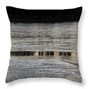Streak Of Reflection Throw Pillow by Yumi Johnson