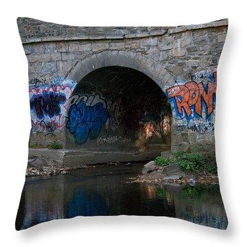 Throw Pillow featuring the photograph Stream Art by Greg Graham