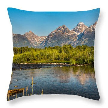 Stream At The Tetons Throw Pillow by Robert Bynum