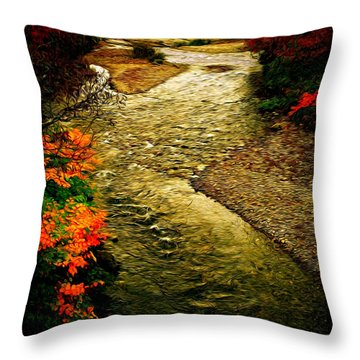 Stream Throw Pillow by Bill Howard