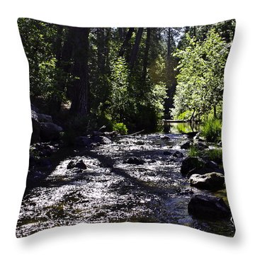 Throw Pillow featuring the photograph Stream by Brian Williamson