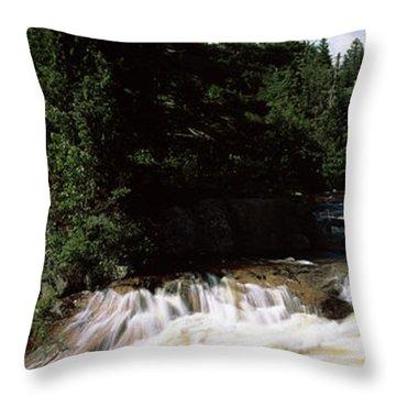 Stream Flowing Through A Forest, Little Throw Pillow