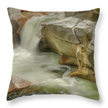 Stream IIi Throw Pillow by Alana Ranney