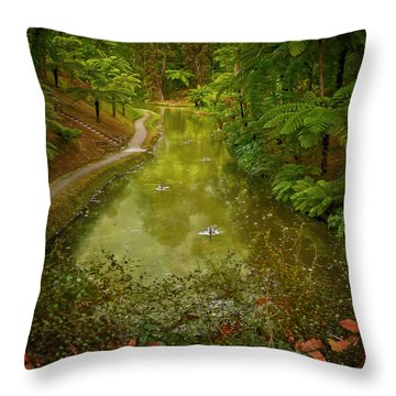 Stream In Paradise Throw Pillow