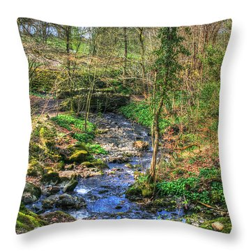 Throw Pillow featuring the photograph Stream In Wales by Doc Braham