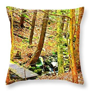 Stream On Appalachian Trail Throw Pillow