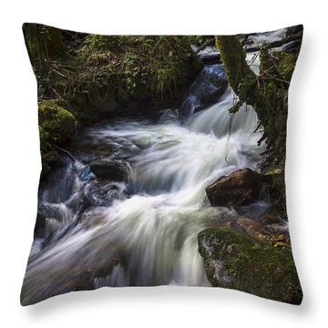 Throw Pillow featuring the photograph Stream On Eume River Galicia Spain by Pablo Avanzini