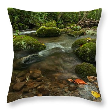 Throw Pillow featuring the photograph Stream With The Color Of Early Fall. by Debbie Green