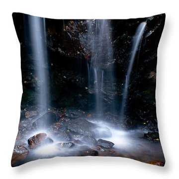 Streams Of Light Throw Pillow by Steven Reed