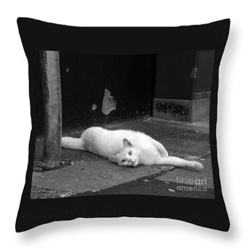 Street Cat Throw Pillow