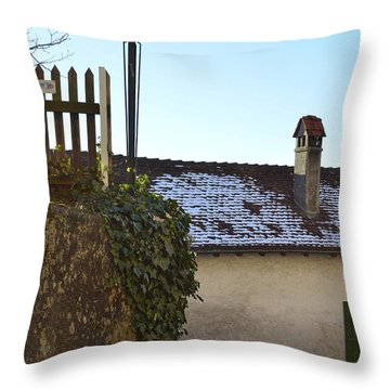Throw Pillow featuring the photograph Street Lamp At The Castle  by Felicia Tica