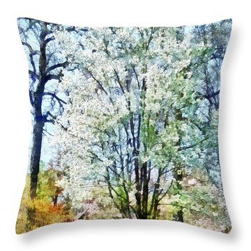 Street With White Flowering Trees Throw Pillow by Susan Savad