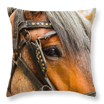 Street Worker Throw Pillow