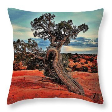 Strength Throw Pillow by Benjamin Yeager