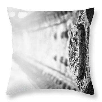 Strength Throw Pillow by Matthew Blum