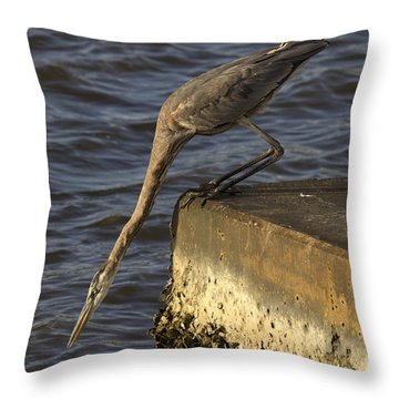 Throw Pillow featuring the photograph Stretch - Great Blue Heron by Meg Rousher