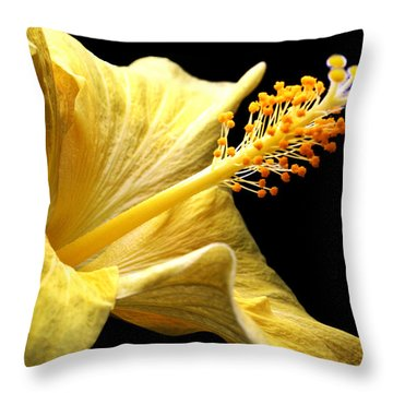 Stretcher Throw Pillow
