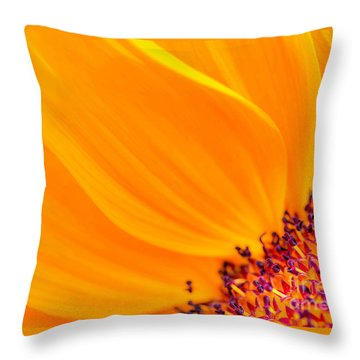 Throw Pillow featuring the photograph Stretching Out by Jim Carrell