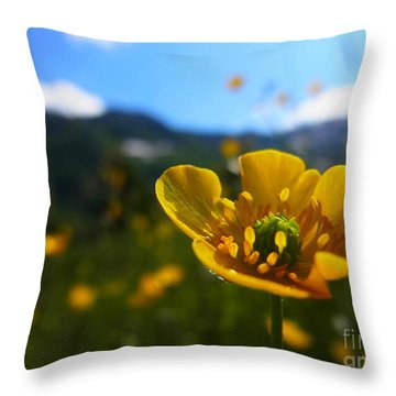 Stretching Towards The Sun Throw Pillow