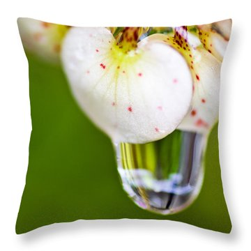 Stretchy Raindrop Throw Pillow by Priya Ghose