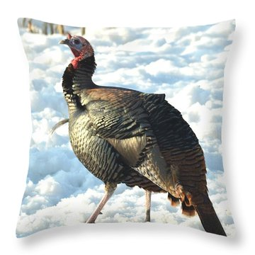 Throw Pillow featuring the photograph Strike A Pose by Dacia Doroff
