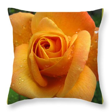 Throw Pillow featuring the photograph Strike It Rich - My Summer Garden by Brooks Garten Hauschild