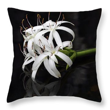 Throw Pillow featuring the photograph String Lily #1 by Paul Rebmann