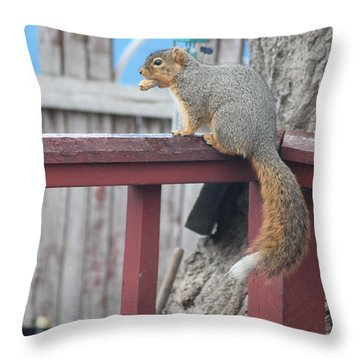 Stripe Got His Peanut Throw Pillow