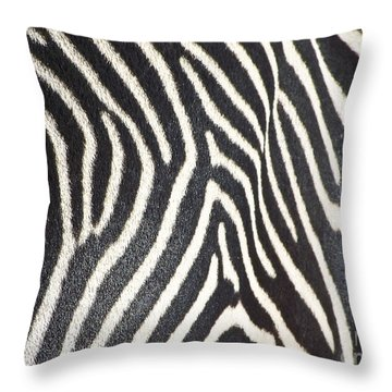 Stripes And Ripples Throw Pillow