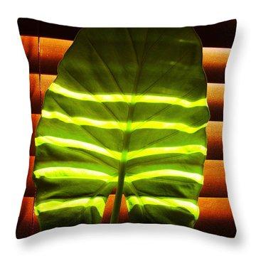 Stripes Of Light Throw Pillow by Nina Ficur Feenan
