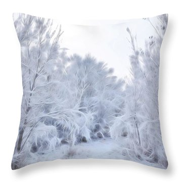 Stroll Through A Winter Wonderland Throw Pillow by Diane Alexander